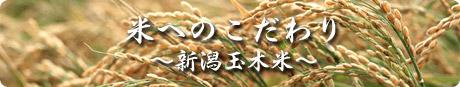 米へのこだわり ~新潟玉木米~